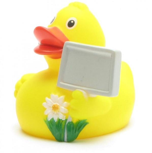 Screeching City Duck