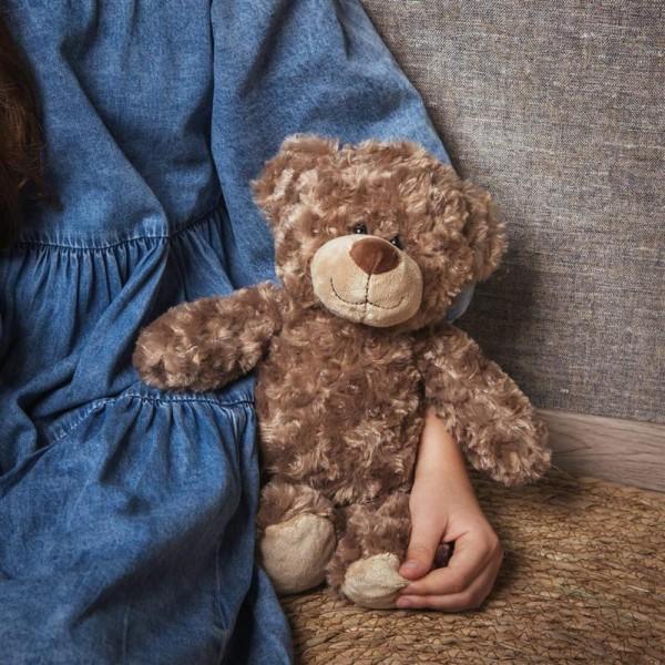 cuddly toy bear Bodo