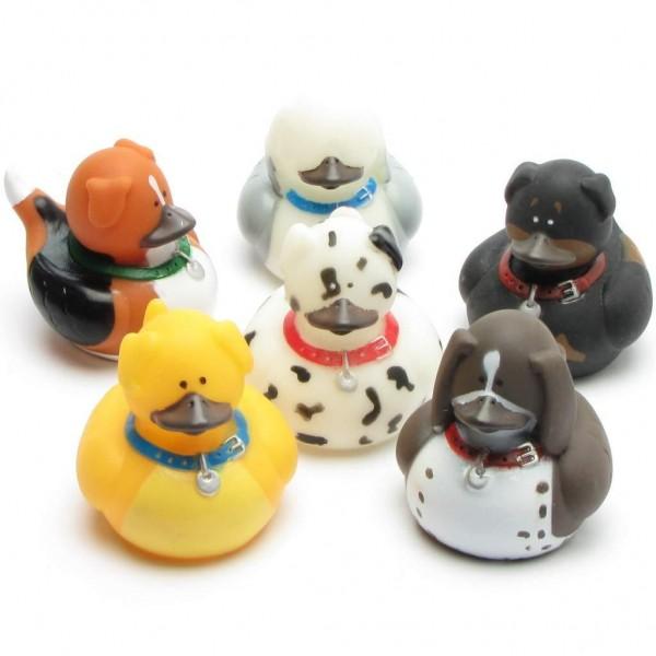 Hunde Badeenten - 6er Set