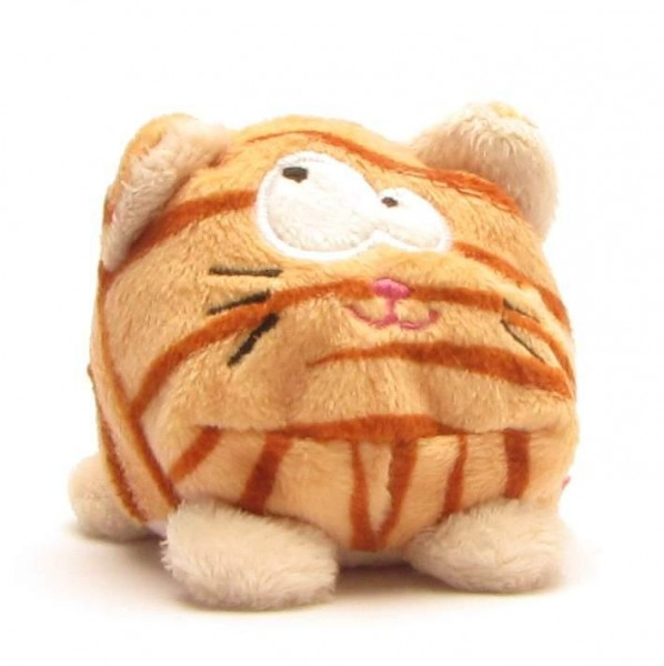 Schmoozies Katze