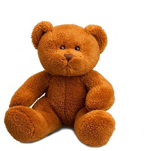 soft toy bear Michaela brown